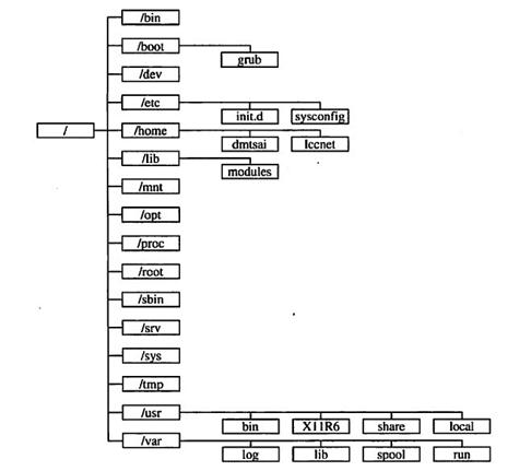 Linux系统下每个目录都有什么用?