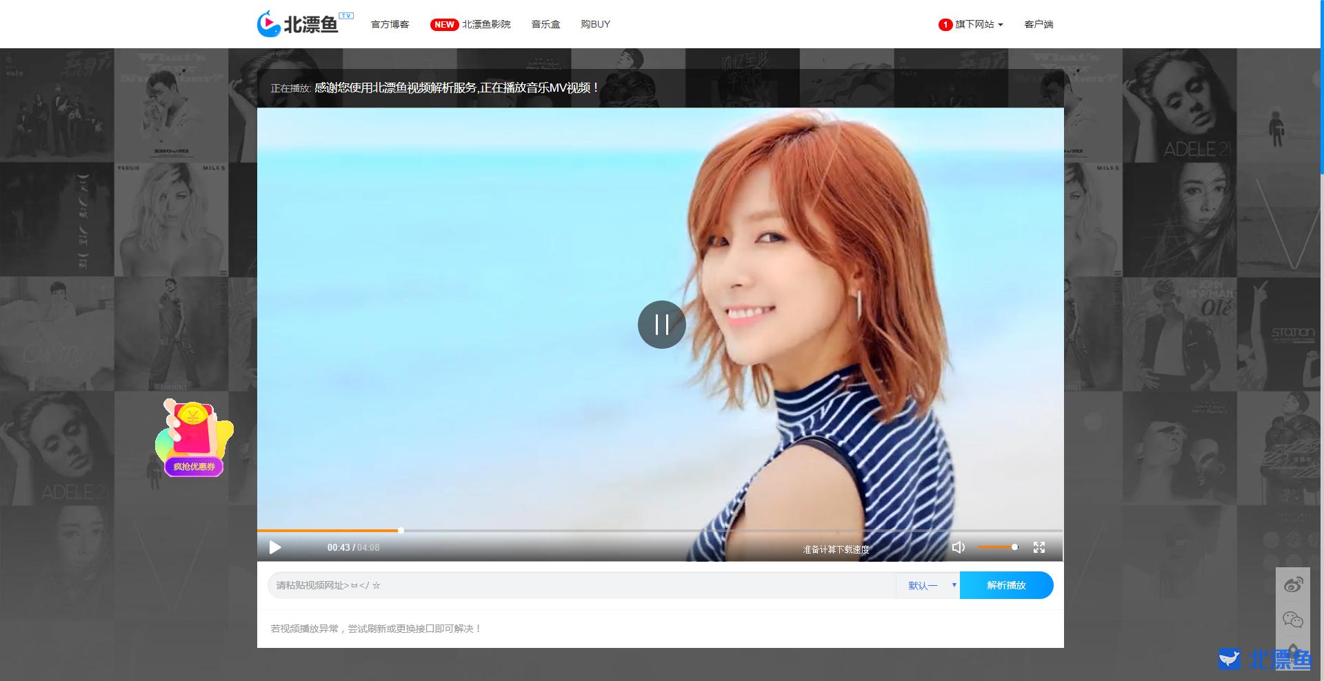 VipVideoResolution(北漂鱼):免费VIP视频解析源码